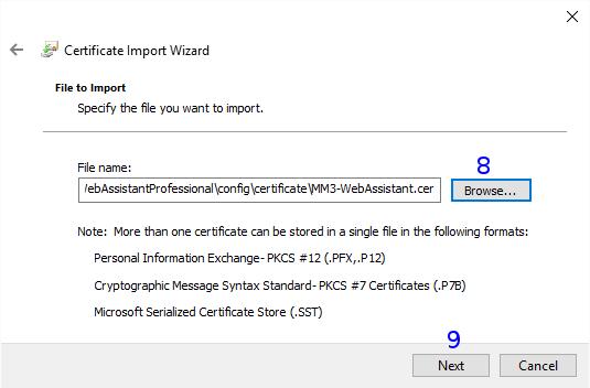Internet Explorer: Certificate Import