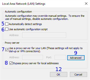 Internet Explorer: Network (LAN) Settings